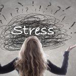 """""""ストレス反応""""が組織の再合成に与える影響"""