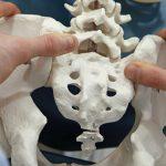 ハムの違和感は仙腸関節が原因!